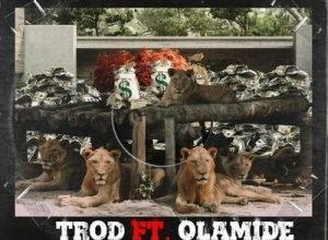Trod – Shey You Go Fit ft. Olamide mp3 download