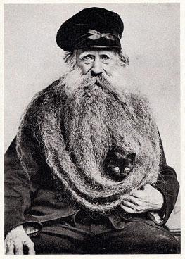 beardcat