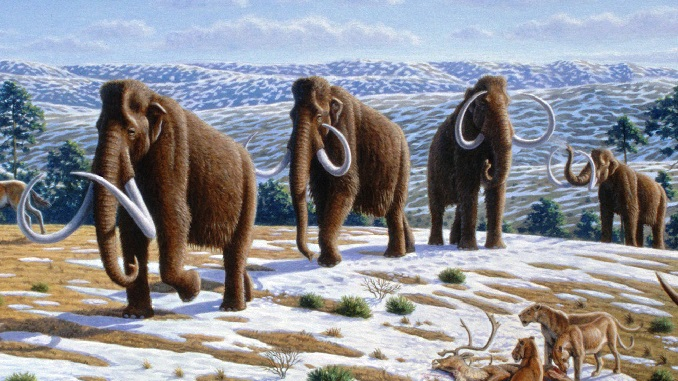 Harvard scientists are bringing back Woolly Mammoths, Jurassic Park style