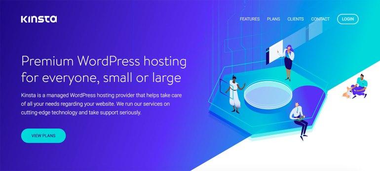 Kinsta hosting