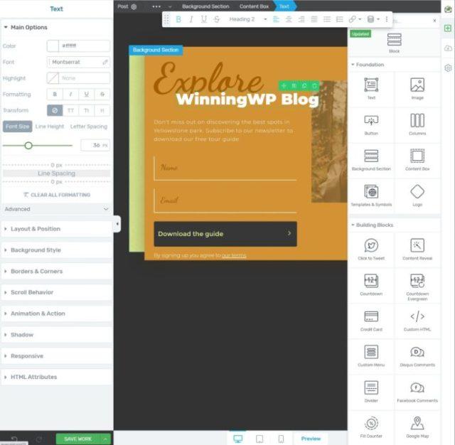 Thrive Leads editor