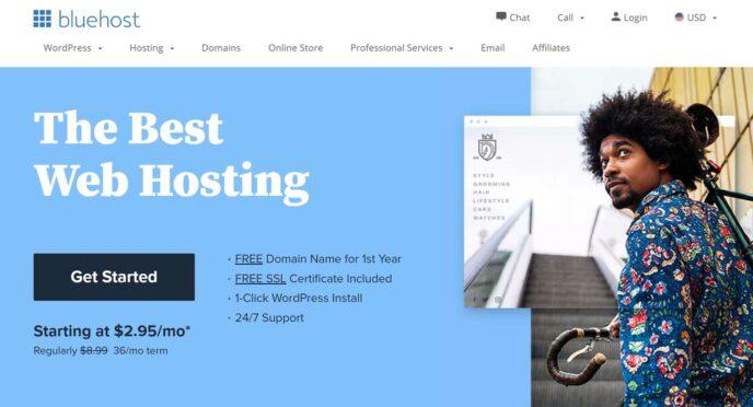 Bluehost vs DreamHost BH Website 1