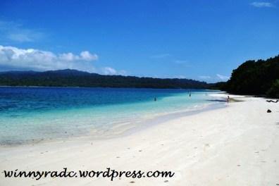 Pulau Peucang