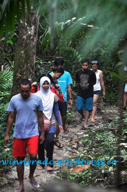Tracking to jungle