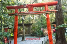 Tenryuji Sogenchi Garden