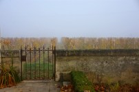 Fog at Fontenil