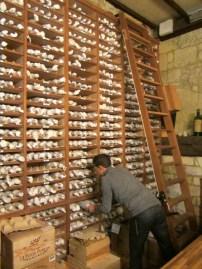 wine nerd heaven