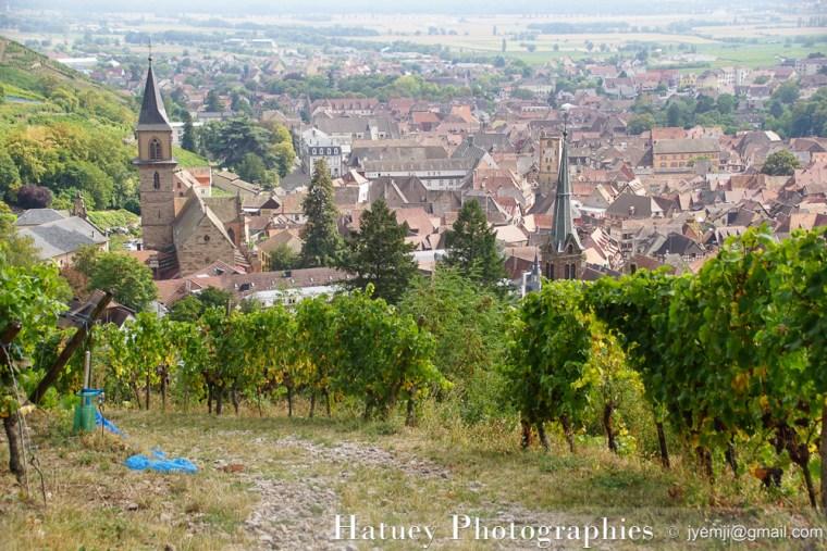 Photographies Ribeauvillé Vignes, Randonnée des 3 châteaux par © Hatuey Photographies