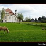 Photographies de l'Eglise de Wies (Allemagne, Bavière) by © Hatuey Photographies
