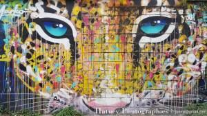 Paris, Photographies de Paris, StreetArt Rue de l'Ourq par © Hatuey Photographies © jyemji@gmail.com
