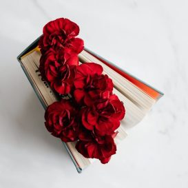 book with red blossoms between pages