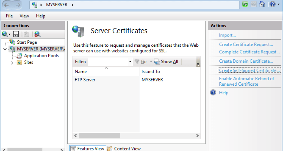 Installing a Secure FTP Server on IIS » Boot Networks