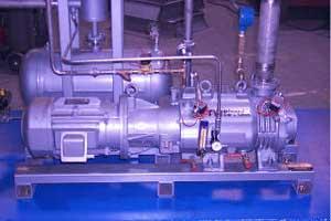 Chemical Duty Dry Vacuum Pump