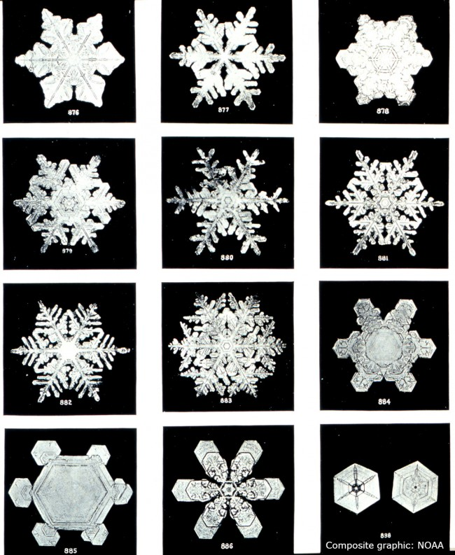 Source: NOAA noaa.gov All About Snowflakes--Plus Free Coloring Pages/Templates, Word Search, Clip Art, Backgrounds, & Gift Tag winterandsparrow.com
