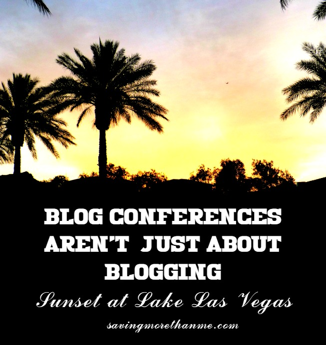 Blog Conferences Aren't Just About Blogging #blogpaws #sponsored {Bonus: Scenes from Lake Las Vegas @WestinLakeLV} winterandsparrow.com