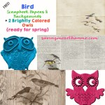 Bird Scrapbook Papers and Digital Owl Images