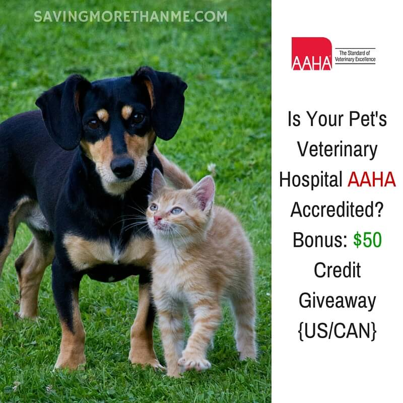 Is Your Pet's Veterinary Hospital AAHA Accredited? Bonus: $50 Credit Giveaway {US/CAN}