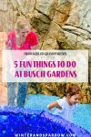 From Kids To Grandparents: 5 Fun Things To Do At Busch Gardens @BuschGardensVA