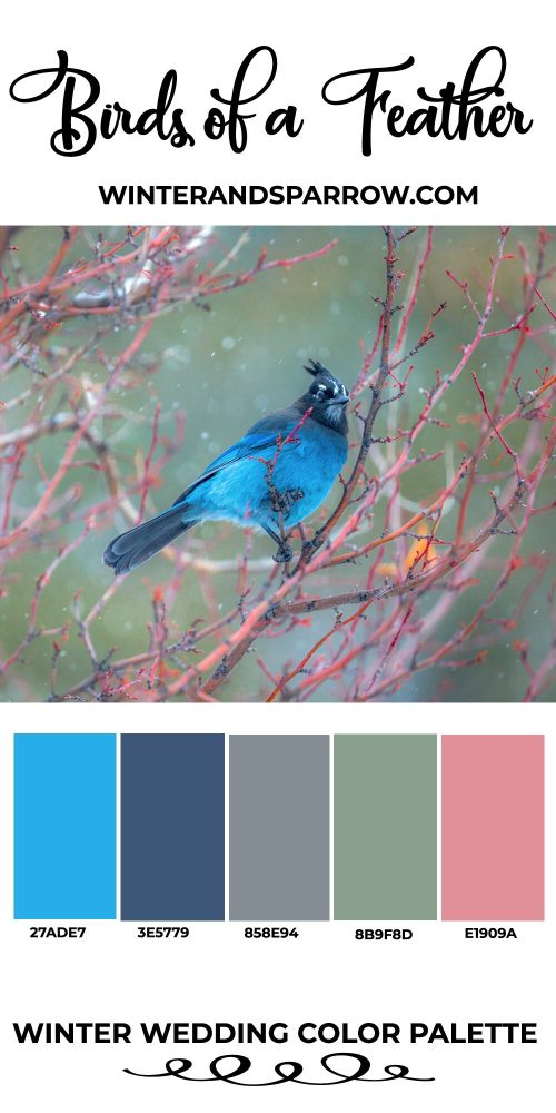 Winter Wedding Colors: Palettes Inspired By Nature   winterandsparrow.com #winterwedding #weddingcolors #weddingideas