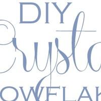DIY Crystal Snowflakes