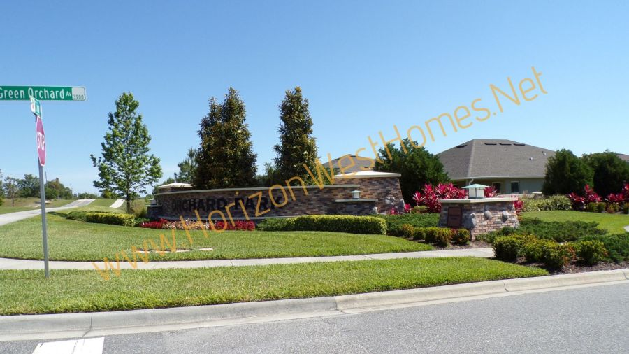 Orchard Park Winter Garden Florida Off Tiny Road and Green Orchard Rich Noto Real Estate Homes for sale