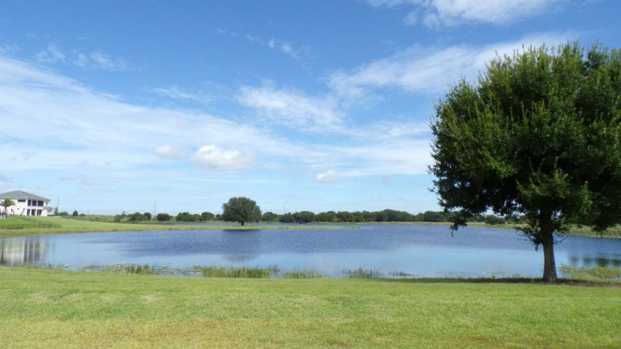 Toll Brothers Lakeshore Winter Garden. Lakefront with Homes View.