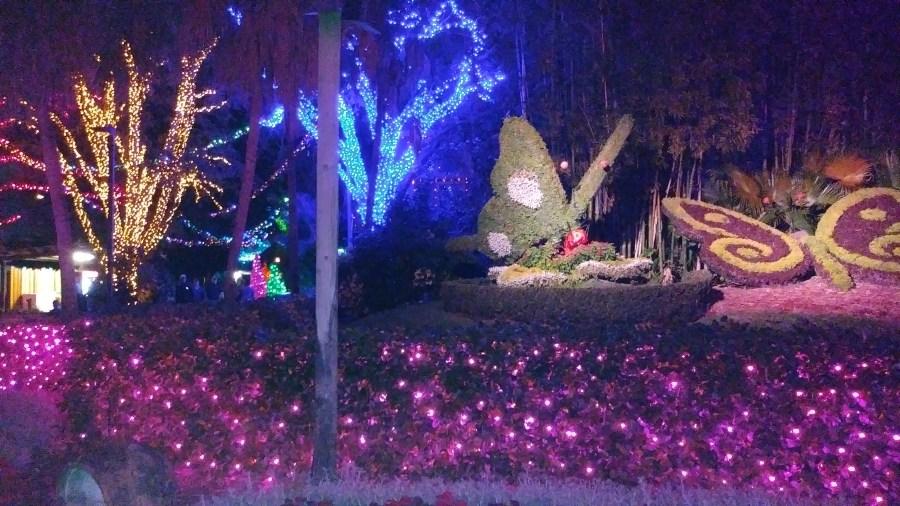Busch Gardens Tampa Christmas