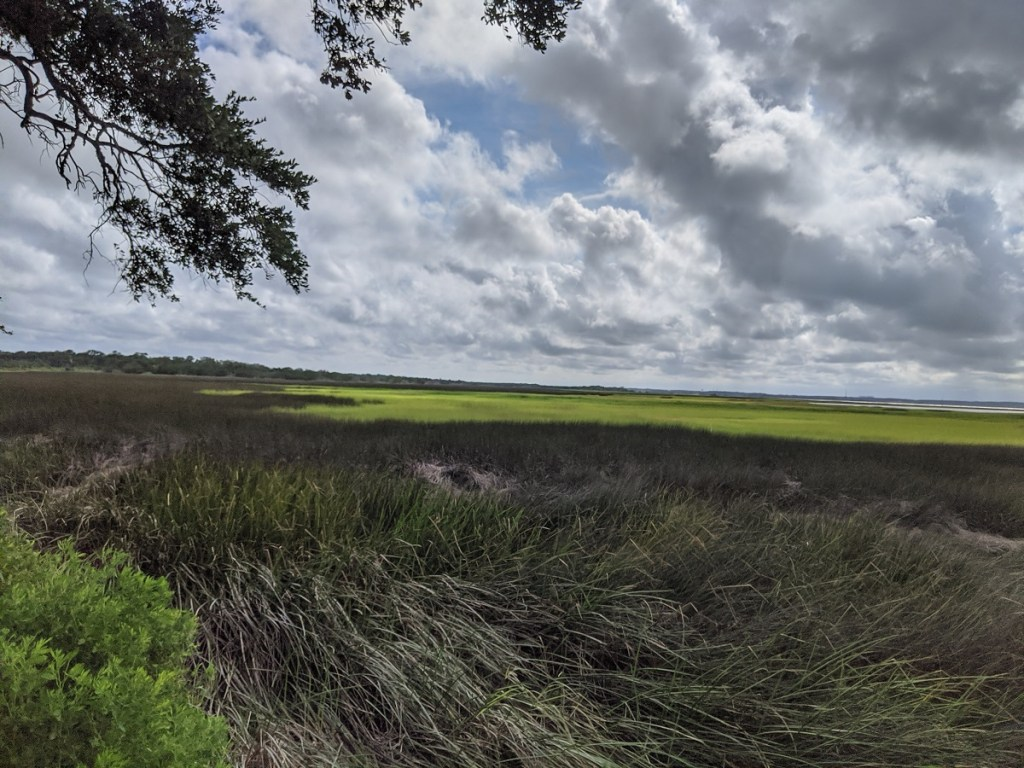 The banks of the Cape Fear River near Fort Fisher
