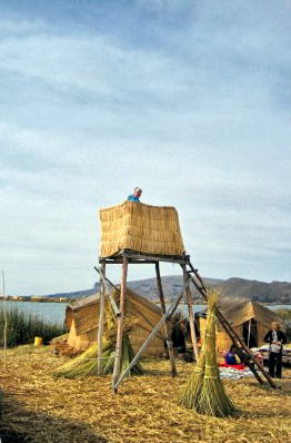 reed tower_robert