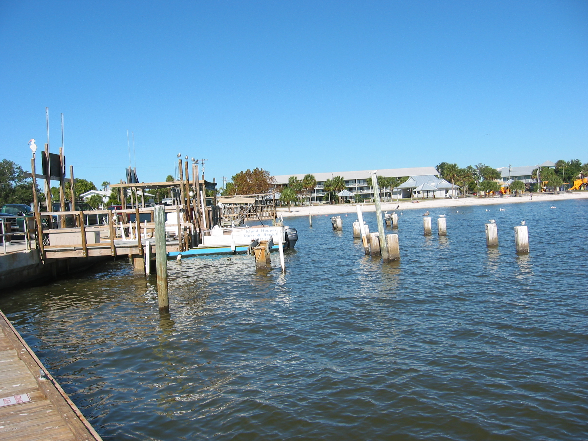 Florida November 2008 170