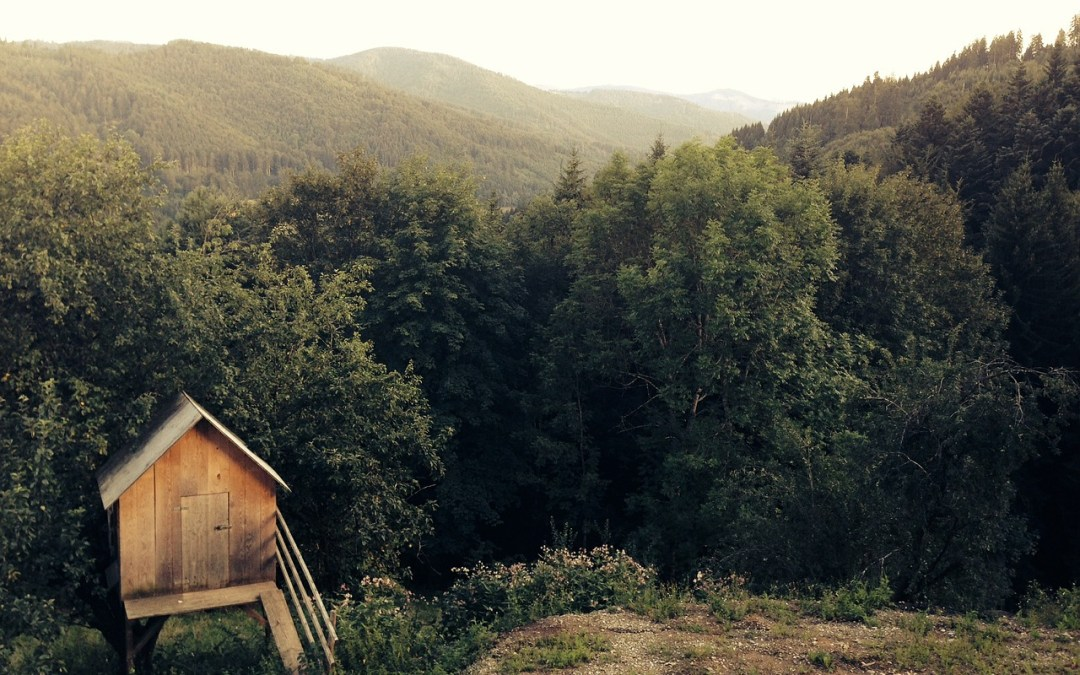 3 Amazing Writing Sheds