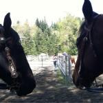 thunderfoot riding LLC Winthrop
