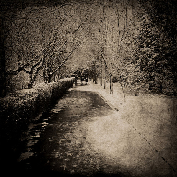 <span class='p-name'>Reflections from Week Four of the #WALKMYWORLD Project</span>