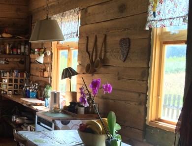 kuchnia_okna2
