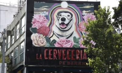 Mural de Frida la perrita rescatista, Frida perrita rescatista, Un día con la Marina, Semar Frida, Fridamania, Fiebre de Frida, terremoto México, Sismo México, Terremotos