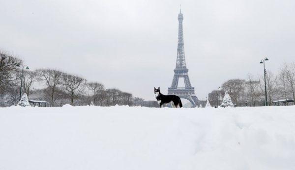 No es tan divertido como parece: nevadas siembran caos en París DVcHp8wXkAAVOeu-600x346