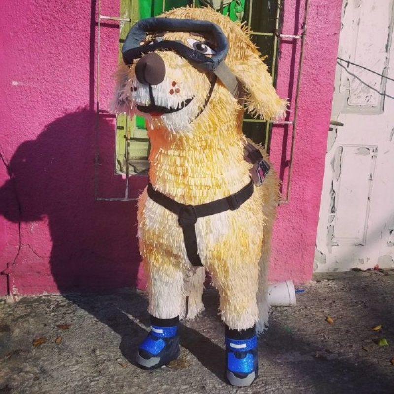 Ya tiene piñata Guillermo del Toro y uno de sus Premios Oscar 21761811_2041192349448710_3279233232048873654_n