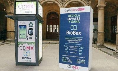 reciclar y ganar dinero