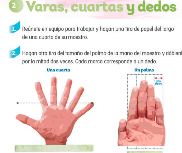 La SEP aceptó que la mano tiene cinco dedos, no seis como los libros de mate Captura-de-pantalla-2018-08-09-a-las-08.44.23