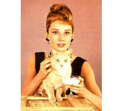 Día Internacional del Gato: celebridades que aman a los mininos ahepburn-medium