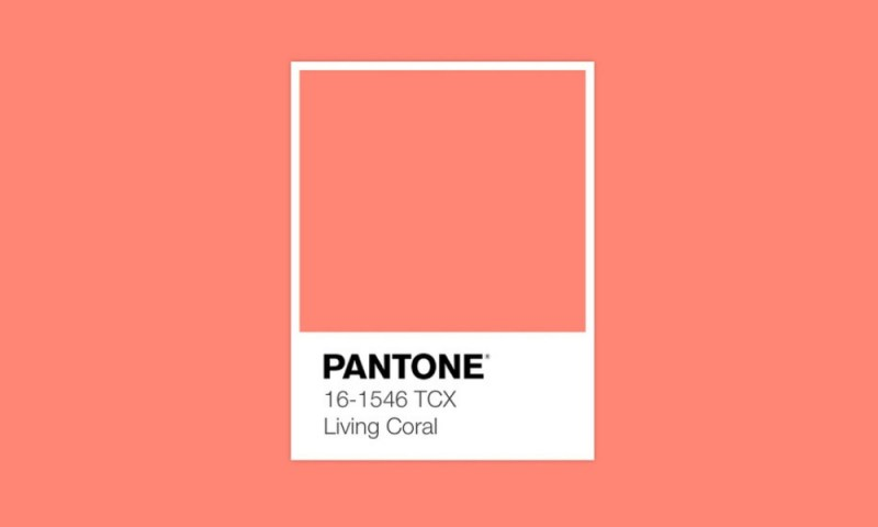 Tonalidad que incita a la conciencia: Pantone reveló el color del año 2019 Pantone-revel%C3%B3-el-color-del-a%C3%B1o-2019