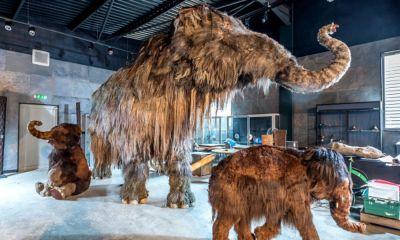 Cambiarán los dragones por mamuts