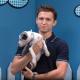 Tom Holland con cachorros