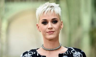Katy Perry plagió una canción