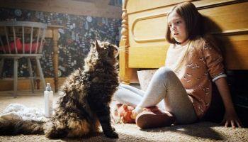 Stephen King recuperaría los derechos de 'Pet Sematary'