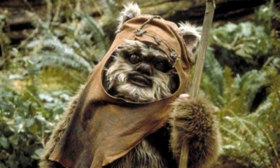 Ewok Wicket tuvo un hijo en The Rise of Skywalker