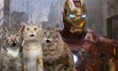 Iron Cat sería el nuevo héroe de Marvel