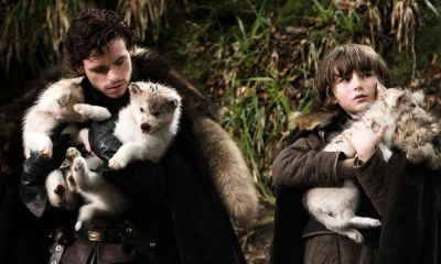pierde la vida perro de 'Game of Thrones'