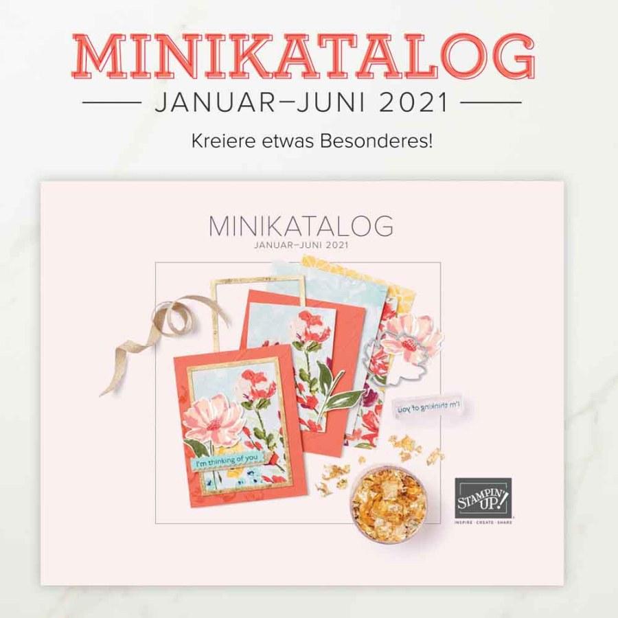 Minikatalog Januar - Juni 2021