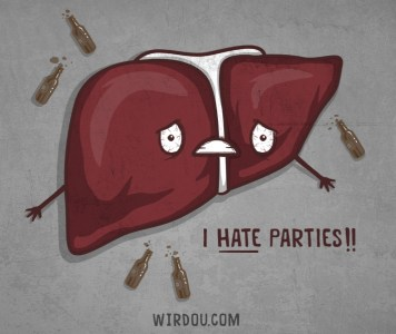 Liver life